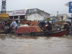 Mekong (15) (Copier)