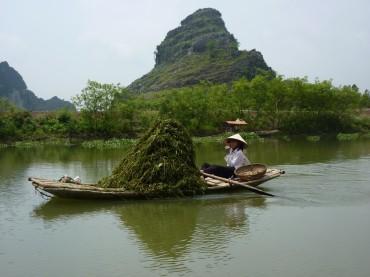 Ninh Binh (64) (Copier)