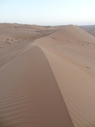 ob_22e7fc_wahiba-sand-5