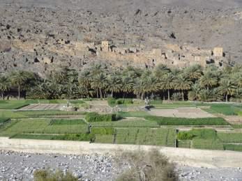 ob_572349_wadi-gull-gorges-13