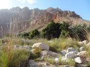 ob_c7e227_wadi-tiwi-2